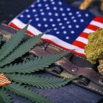 Veterans for Medical Cannabis Access